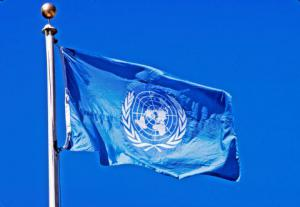 Sri Lanka's 6th Amendment to be Challenged at the UN by TGTE: Call to all Lawyers to Join.